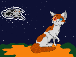 Brightheart I'm sorry.... by Spottedleaf24