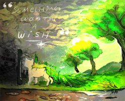 Something Worth a Wish... by coolara