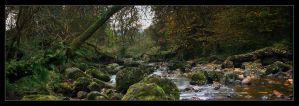 Campsie Glen x by lucias-tears