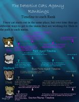 Detective Cats Ranking Guide19 by Bircfallstar