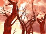 Fire Trees by EricNagel