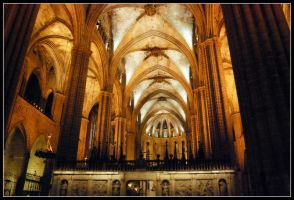 Barcelona Cathedral II by 250981