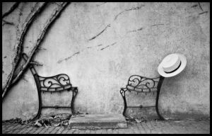 hat and bench by ask4