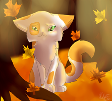 Fallen Leaves(softpaw) by Skystar-Warrior