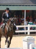 Sidesaddle on an Andalusian by morghach