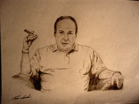 Tony Soprano by dtwolf