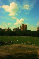 Central Park by justinaversano