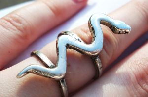Silver Snake Ring by salvagedsword