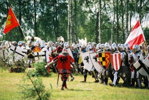 Battle of Grunwald - 2004 by Avignon-Pope
