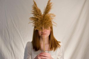 Wheaty Woman 3 by ACrazyCharade-Stock