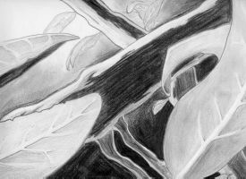 Through the Bushes - Graphite by himynameiznate