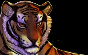 En Tiger wallpaper by tigon