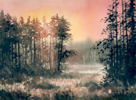 forest morning by nibybiel