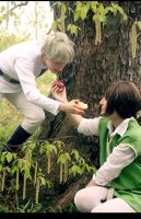 APH: Hungary and Prussia 2 by Amapolchen