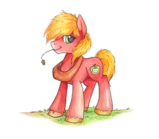 big mac by mapony240