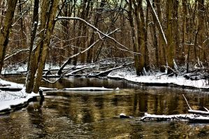 Sycamore River by quetwo