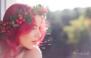 Rosehip autumn by moijra