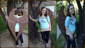Folded Maleficent Wings by ThePinkPoudo
