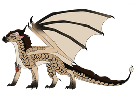 Queen Of Dragon Fire's Reference Sheet CM by Sahel-SandWing