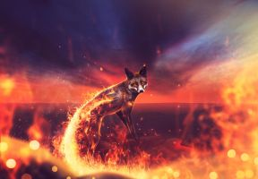 Fire Fox by AnthonyHearsey