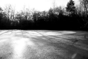 Frozen lake ( against the light ) by UdoChristmann