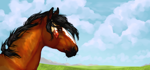 Redraw Challenge: Day 4- Horse banner by pipamir