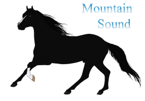 3027 DHC Mountain Sound by Cerulean-Sky-Stables