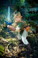 LoZ: Twilight Princess -  Link by Miyukiko