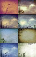 8 Free Floral Composite Textures PLUS Brushes by ibjennyjenny