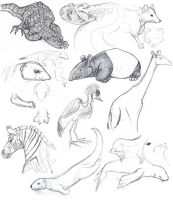 Day at the Zoo Sketch Dump by MadMouseMedia