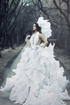 Paper Dress by Donna-Lynn
