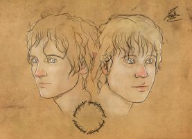 Sam and Frodo by Moumou38