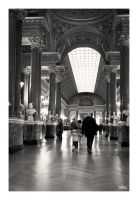Visiteurs by rdalpes