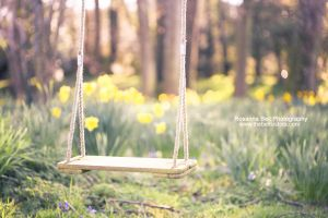 My Swing - Day 63 by rosannabell