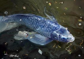 Blue Koi digital painting by Rosane-Chawi