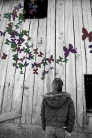 Butterfly Barn by Takemybreathaway1191