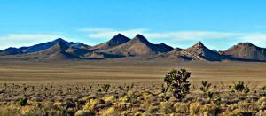 Nevada Desert by MacroMagnificent