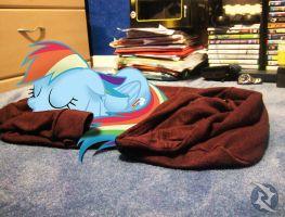 My Little Dashie #3: Napping on my Jacket by mBrooks95