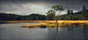River Teith In Flood by tamaskatai