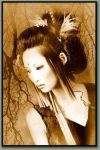 Gilded beauty by Sepia-Club
