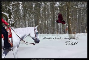 Winter Storm Manip by XtremeMystery