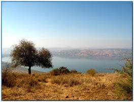 View to Kineret by ShlomitMessica