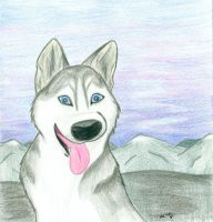 Dog of the North by wahyawolf