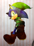 Sonic x Link by Baitong9194