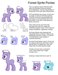 Species Ref-Forest Sprite Ponies by Strawberry-T-Pony