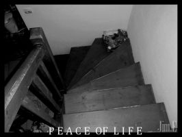 PEACE OF LIFE 1.1 by Jim971