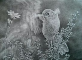 Bird charcoal a4 by Helsartpage