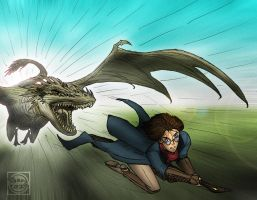 Harry Potter vs the Horntail by What-the-Gaff