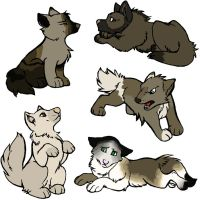 FREE wolf or dog adopts 3 - CLOSED by HannahLouLou