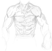 Torso Study 1 by MGMags